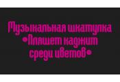 Музыкальная шкатулка «Пляшет каджит среди цветов»